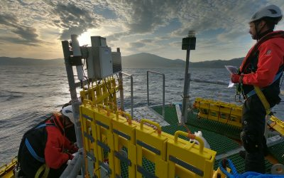 First NEMMO's EU project panels hit the water for biofouling tests